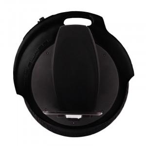 Моноколесо FireWheel F260 Black (Чёрный)